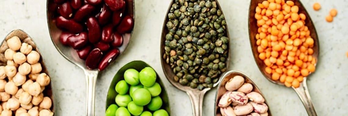 plantaardige-eiwitten-verzadigen-meer-dan-dierlijke-eiwitten-1485624440