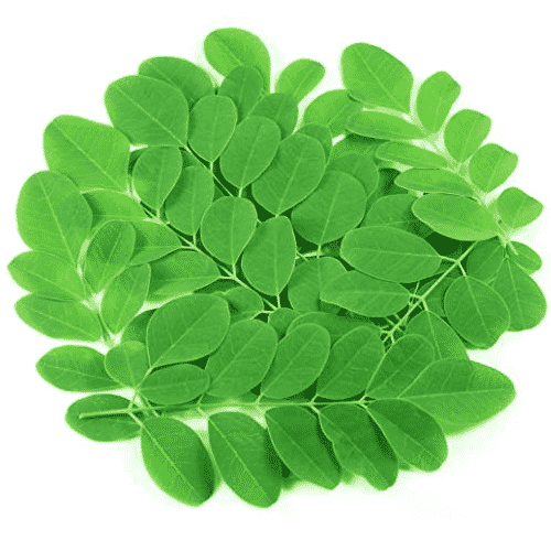 brandnetel.jpg (JPEG Image, 450×299 pixels) 2020-01-14 22-35-56