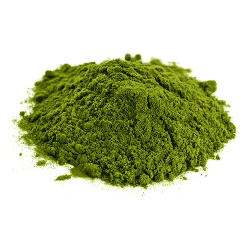 chlorella square